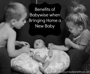 newbabybabywise